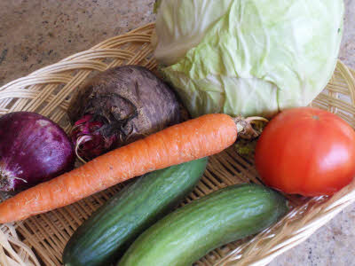 Raw vegetables for kachumar salad